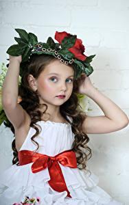 Картинка Серый фон Девочки Модель Шатенка Руки Бантик Взгляд Красивые Ребёнок