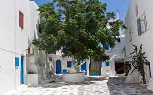 Фотография Греция Дома Дерево Kalo Livadi, Mykonos