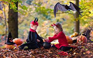 Картинка Хэллоуин Осень Тыква Летучие мыши Девочки Мальчики Униформа ребёнок