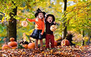 Фотография Хеллоуин Осень Тыква Два Мальчик Девочки Шляпа Листва Дети