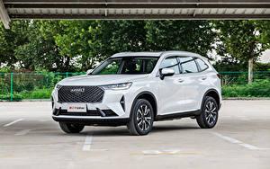 Картинка Haval Белых Металлик CUV Китайская H6 (B01), 2020 -- Автомобили