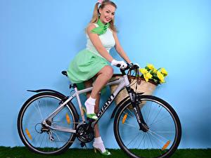 Обои Hayley Marie Coppin Стенка Велосипеды Улыбается Блондинки Сидящие Корзина девушка