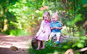 Фотографии Ежики Девочка Мальчишки Двое Ствол дерева Улыбается Сидит Дети