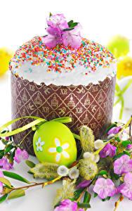 Фотография Праздники Пасха Кулич Яйца Ветки Дизайн Пища