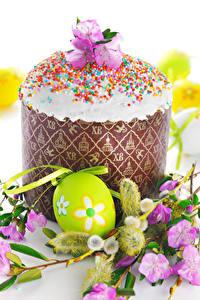 Фотография Праздники Пасха Кулич Яиц Ветки Дизайна Пища