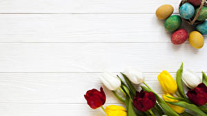 Фото Праздники Пасха Тюльпаны Доски Яйцо Цветы