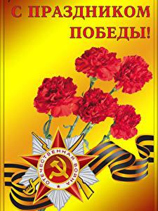 Фото Праздники День Победы Гвоздика Звездочки Лента Русские