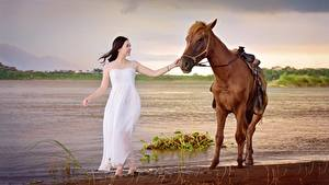 Обои Лошади Азиатки Платье Животные Девушки