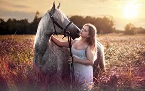 Фотографии Лошади Шатенки девушка Животные