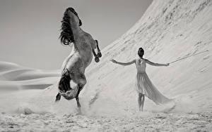 Фотография Лошади Платье Черно белые Животные Девушки