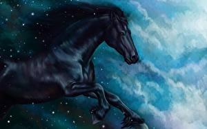 Обои Лошади Рисованные Черная Бег животное
