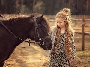 Обои для рабочего стола Лошадь Пони Девочка Волосы Victoria Dubrovskaya Животные Дети