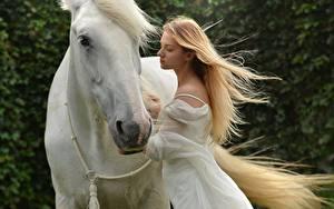 Фото Лошадь Вдвоем Блондинка Белый животное Девушки