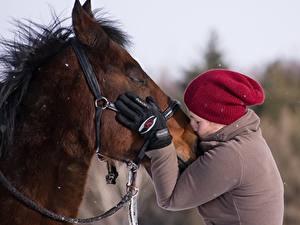 Фотографии Лошади Два Целует Руки Перчатки Шапки Девушки