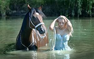 Фотографии Лошадь Воде Блондинки Влажные Красивая девушка