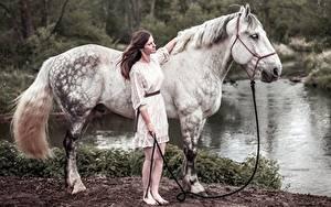 Картинки Лошадь Сбоку colt male животное Девушки