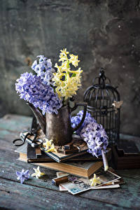 Обои Гиацинты Доски Ваза Книги цветок
