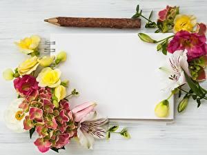 Обои Гортензия Шаблон поздравительной открытки Блокнот Цветы