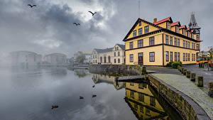 Фотографии Исландия Здания Птица Озеро Набережная Тумане Reykjavík, Lake Tjörnin Города