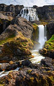Фото Исландия Горы Камни Водопады Речка Скала Dynjandi waterfalls