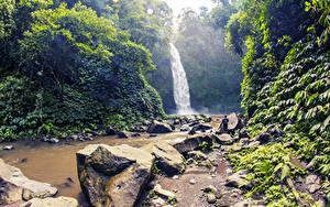 Обои Индонезия Тропический Водопады Камни Скала Кусты Bali
