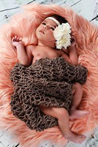 Картинка Младенец Смотрит
