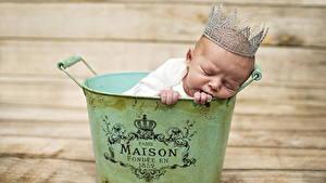 Фотографии Младенцы Спит ребёнок