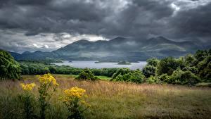 Фотографии Ирландия Гора Озеро Тучи Деревьев Killarney, Kerry Природа