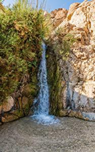 Обои для рабочего стола Израиль Водопады Скале Мха David's Waterfall Природа