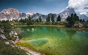 Обои Италия Озеро Горы Дерево Lago Limides