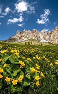 Обои для рабочего стола Италия Горы Альп South Tyrol, Dolomites Природа