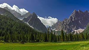 Фотографии Италия Гора Альп Облака Деревьев Trentino-Alto Adige