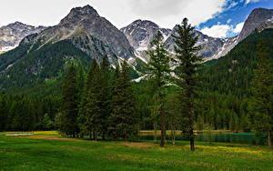 Фотография Италия Гора Альп Дерева Облака Trentino-Alto Adige