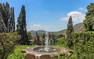 Фотография Италия Парки Фонтаны Дерева Villa D'Este Tivoli Природа