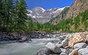 Картинка Италия Парки Гора Леса Речка Камни Valle d'aosta, Gran Paradiso national Park