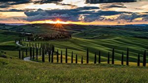 Фотография Италия Тоскана Пейзаж Рассветы и закаты Поля Небо Холмы Деревья Облака Природа