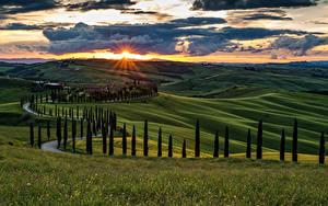 Фотография Италия Тоскана Пейзаж Рассветы и закаты Поля Небо Холмы Деревья Облачно Природа