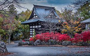 Фотография Япония Здания Дизайн Кусты Numata Города