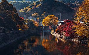 Обои Япония Киото Осень Горы Водный канал Деревья Arashiyama