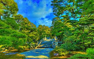 Фото Япония Киото Сады HDRI Дизайна Лестницы Дерево Imperial Palace gardens Природа