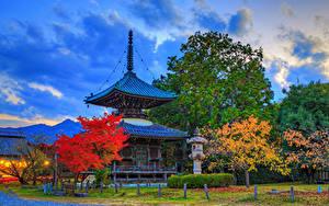 Фото Япония Киото Парк Пагоды Осенние HDRI Дерево Лучи света Seiryo-ji