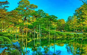 Обои Япония Парки Пруд HDRI Дерева Отражение Kanazawa Kenrokuen Garden Природа