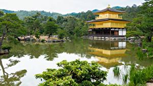 Картинка Япония Храм Киото Пруд Деревья Kinkaku-ji город
