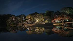 Фото Япония Токио Парк Пруд Дерева Ночные Отражение Природа