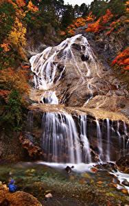 Картинка Япония Водопады Осенние Утес Hakusan Ishikawa
