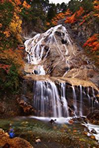 Картинка Япония Водопады Осенние Утес Hakusan Ishikawa Природа