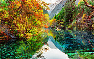 Фотография Цзючжайгоу парк Китай Парки Озеро Осенние Леса Пейзаж Природа