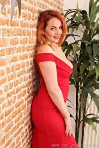 Картинка Kara Carter Стенка Из кирпича Рыжие Смотрит Улыбается Платья Рука Красная девушка
