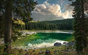Картинки Озеро Италия Лес Пейзаж Дерево Dolomites, Karersee Природа