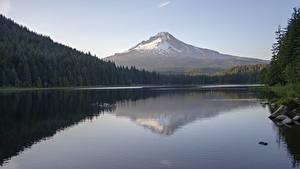 Фото Озеро Горы Лес США Камень Отражение Вулкан Mount Hood, Trillium Lake, Oregon